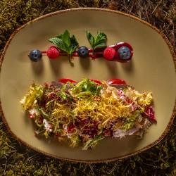 Салат из утки и свежих овощей